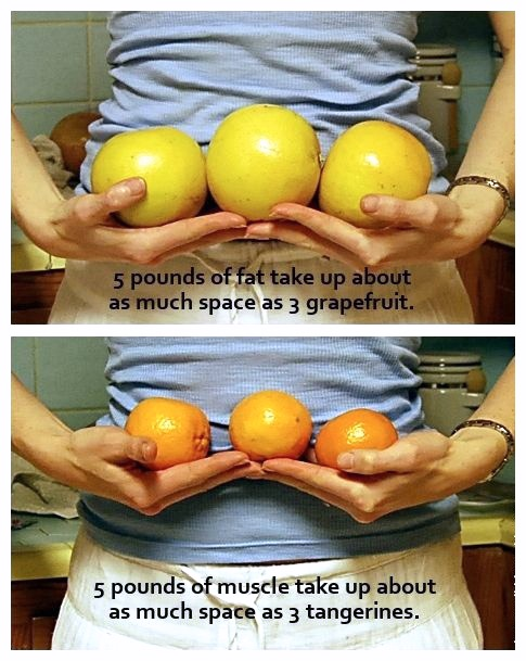 body-fat-fruit-comparison